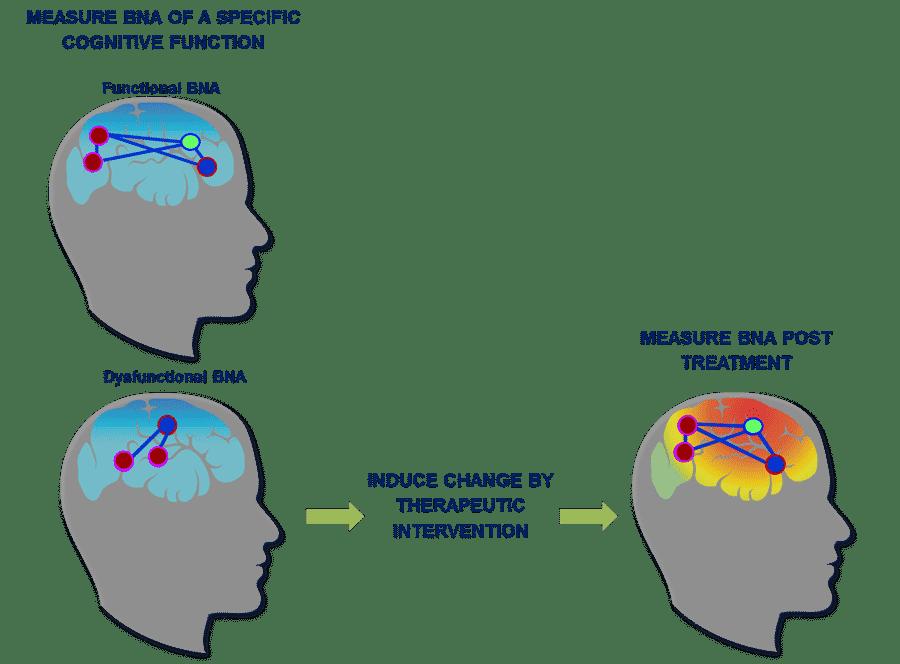 ElMindA-BNA-Analysis